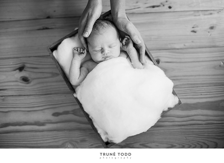 Cape Town Newborn Photographer-Baby William