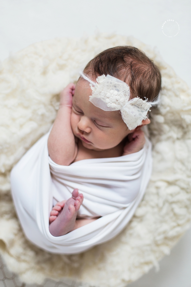 Cape town newborn photographer pin on pinterest